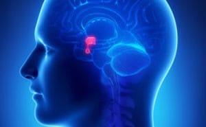 Гипопитуитаризм: что это такое, симптомы, лечение