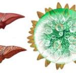 Что такое гепатит С — чем он опасен и как его лечить