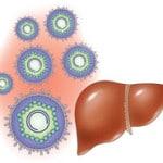 Гепатит В — что это такое и как передается, как лечит и как избежать