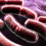 Туберкулез — симптомы, первые признаки